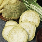 Celeriac Plants - Monarch