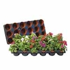 Shuttle Trays & Pots