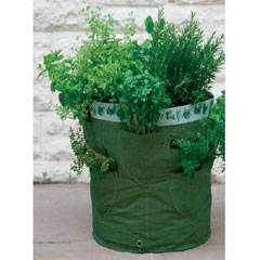 Kitchen Herb Patio Planter Pack of 2