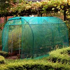 Steel Fruit Cage 3m x 2m