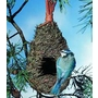 Tall Roosting Nest Pocket