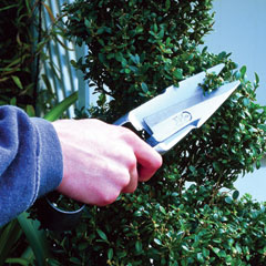 Burgon and Ball Premium Topiary Shears