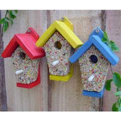 Birdie Bistro Feeder - Pack of 3