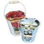 Outdoor Lily Patio Growing Kit