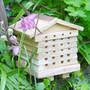 FSC Solitary Bee Hive