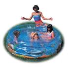 Sea Life Pool