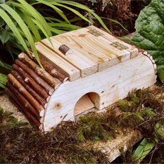Frog/Toad House