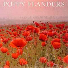 Flower Seeds - Poppy Flanders