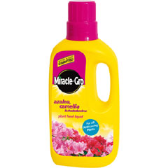 Miracle Gro Azelea Camellia and Rhododendron Plant Food 1 litre