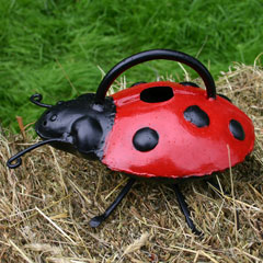 Ladybird Style Watering Can