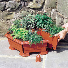Plant And Herb Garden Planter