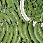 RHS Seeds - Pea Sugar Ann