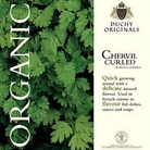 Chervil Curled - Duchy Originals Organic Seeds
