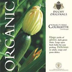 Courgette  Dundoo F1 - Duchy Originals Organic Seeds