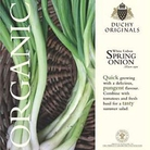 Spring Onion  White Lisbon - Duchy Originals Organic Seeds