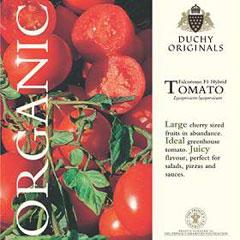 Tomato Falcorosso F1 - Duchy Originals Organic Seeds