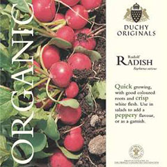 Radish Rudolf - Duchy Originals Organic Seeds