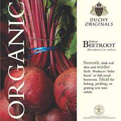 Beetroot Bolivar - Duchy Originals Organic Seeds