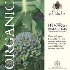 Broccoli  Fiesta F1 - Duchy Originals Organic Seeds