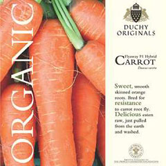 Carrot Flyaway F1 - Duchy Originals Organic Seeds