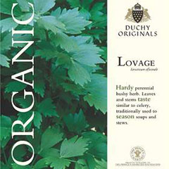 Lovage - Duchy Originals Organic Seeds