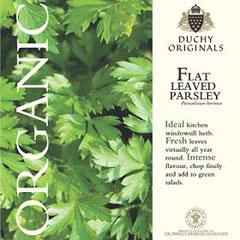 Parsley Flat Leaved - Duchy Originals Organic Seeds