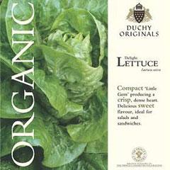 Lettuce Little Gem - Duchy Originals Organic Seeds