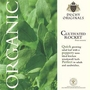 Cultivated Rocket - Duchy Originals Organic Seeds