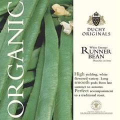Runner Bean White Emergo - Duchy Originals Organic Seeds
