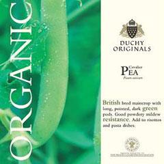 Pea Cavalier - Duchy Originals Organic Seeds