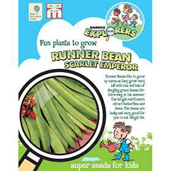 RHS Childrens Seeds - Runner Bean Scarlet Emperor