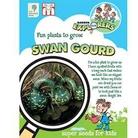 RHS Childrens Seeds - Swan Gourd