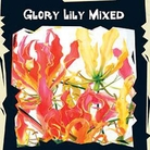World Garden Seeds-Mixed Glory Lily