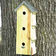 Three Storey Sparrow House