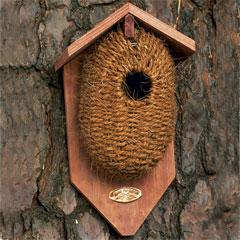 Woven Birds Nest: Coconut