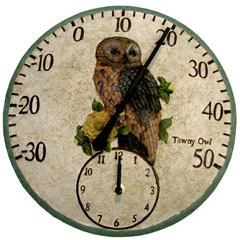 Owl Dial Thermometer