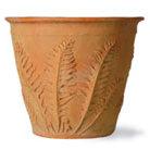 Fern lightweight pot