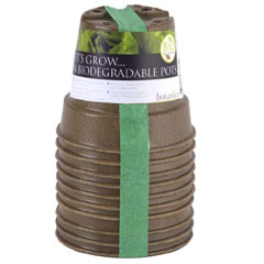 Biodegradable Pot 10cm - Set of 10