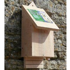Chavenage FSC Bat Box