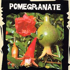 Exotic Seeds - Pomegranate