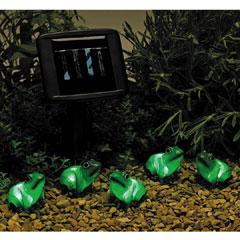 Solar Powered Frog Lights - Set Of 5
