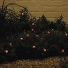Solar Powered Ladybird Lights - Set Of 15