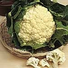 Cauliflower Galleon Seeds