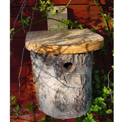 FSC Silver Birch Blue Tit Nest Box