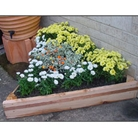 Wooden Triangle Raised Bed With Coppa-Stoppa 15cm High