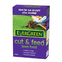 Evergreen Cut & Feed Lawn Food 100 sq.m