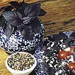 Herb Seed - Basil Red