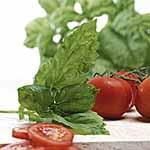 Herb Seed - Basil Neapolitan