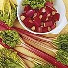 Rhubarb Victoria Seeds
