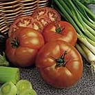 Tomato F1 Beefeater Seeds